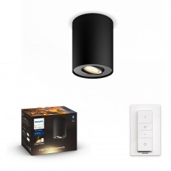 Philips hue PILLAR Spot -...